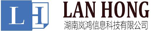 湖南岚鸿信息科技有限公司官网